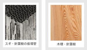 木のパワーと木材